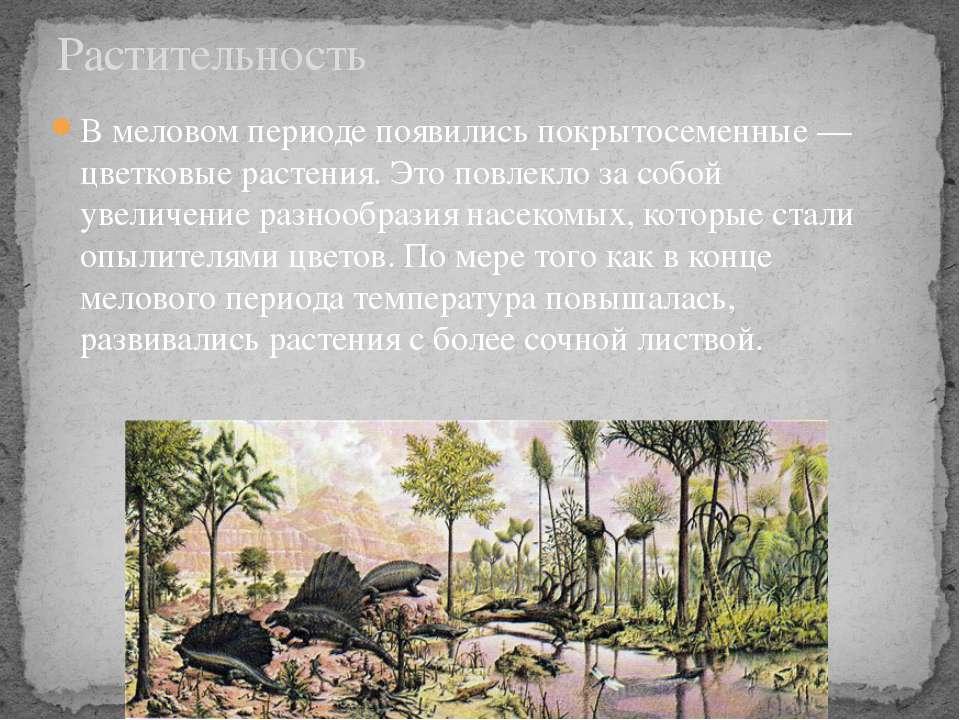 В меловом периоде появилисьпокрытосеменные— цветковые растения. Это повлекл...