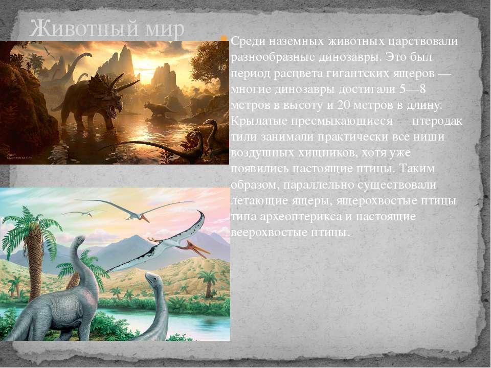 Среди наземных животных царствовали разнообразные динозавры. Это был период р...