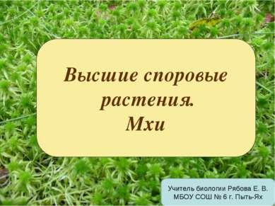 Высшие споровые растения. Мхи Учитель биологии Рябова Е. В. МБОУ СОШ № 6 г. П...