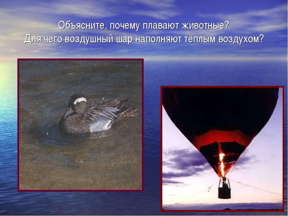 Объясните, почему плавают животные? Для чего воздушный шар наполняют теплым в...