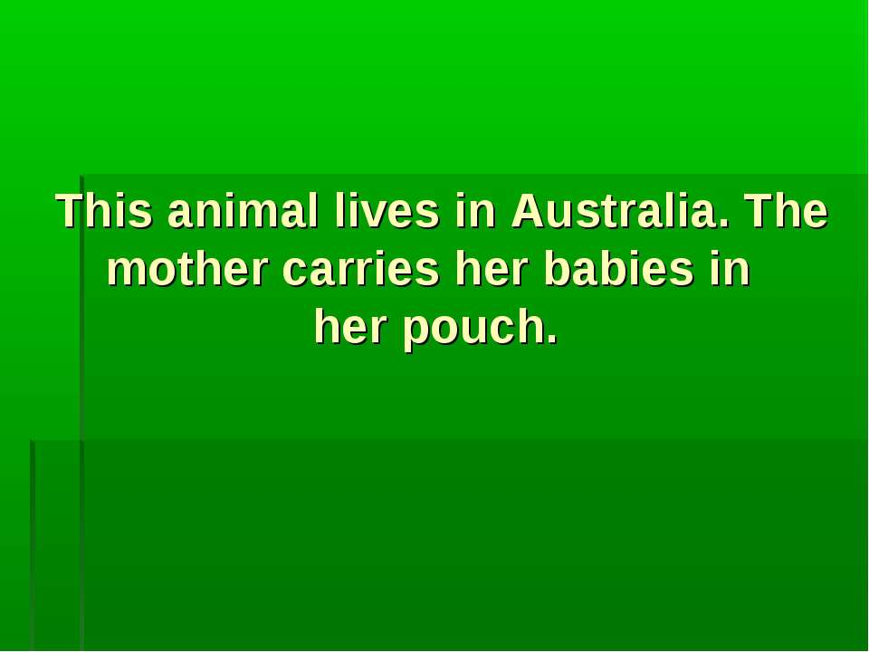 This animal lives in Australia. The mother carries her babies in her pouch.