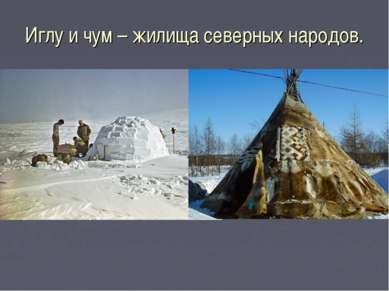 Иглу и чум – жилища северных народов.