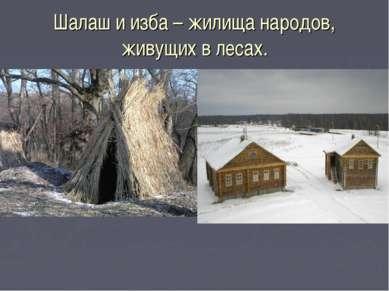 Шалаш и изба – жилища народов, живущих в лесах.