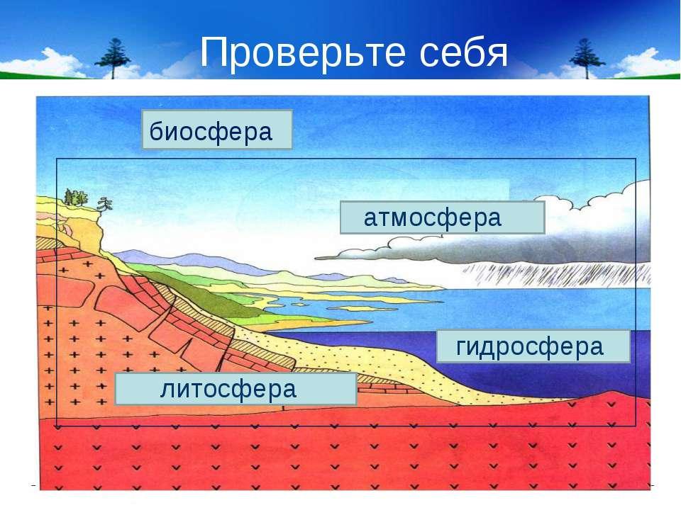 Проверьте себя биосфера атмосфера гидросфера литосфера