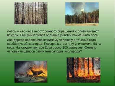 Летом у нас из-за неосторожного обращения с огнём бывают пожары. Они уничтожа...