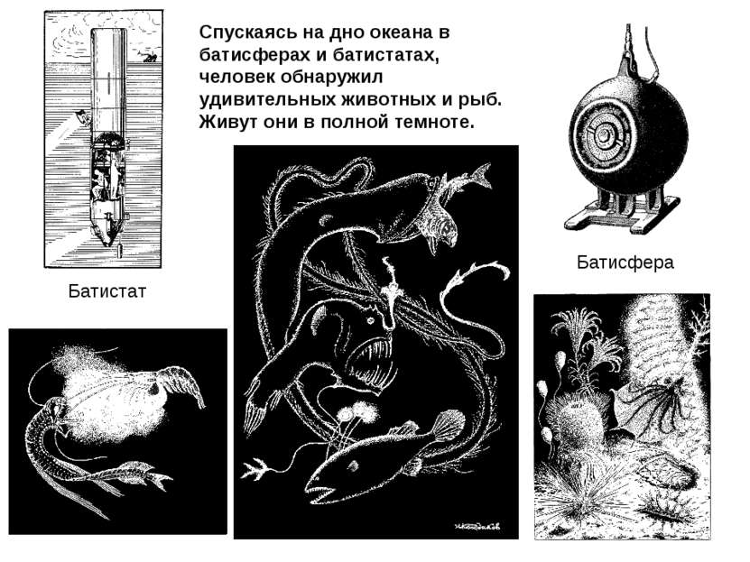 Батисфера Батистат Спускаясь на дно океана в батисферах и батистатах, человек...