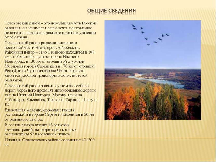 Сеченовский район – это небольшая часть Русской равнины, он занимает на ней п...