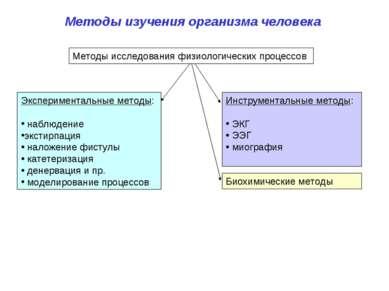 Методы изучения организма человека Экспериментальные методы: наблюдение эксти...