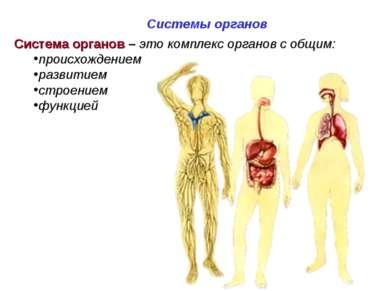 Система органов – это комплекс органов с общим: происхождением развитием стро...