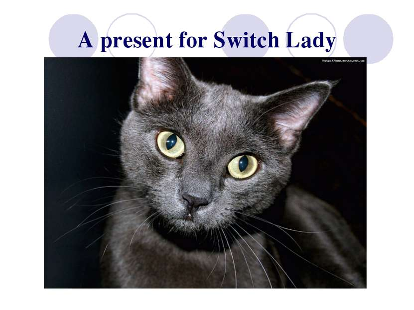 A present for Switch Lady