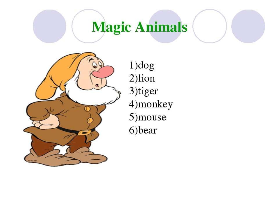 Magic Animals 1)dog 2)lion 3)tiger 4)monkey 5)mouse 6)bear