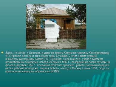 Здесь, на Алтае, в Сростках, в доме на берегу Катуни по переулку Кооперативно...