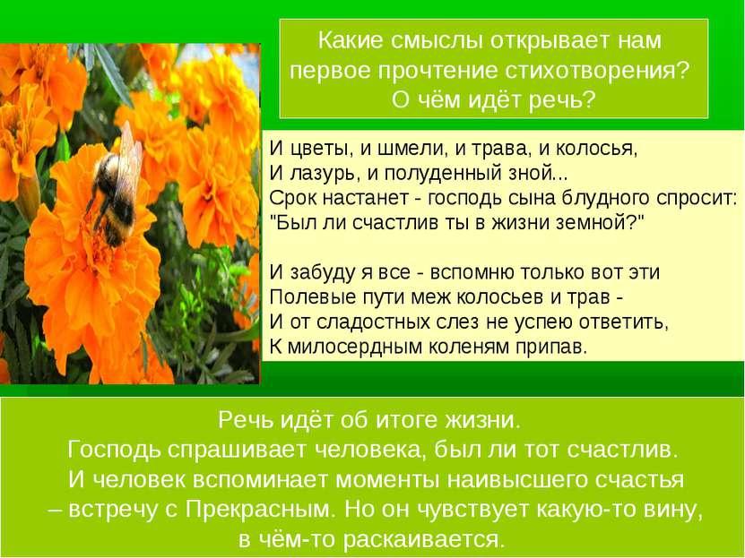 И цветы, и шмели, и трава, и колосья, И лазурь, и полуденный зной... Срок нас...
