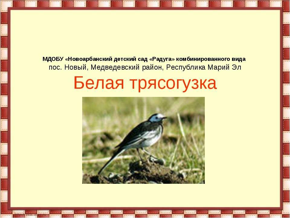 МДОБУ «Новоарбанский детский сад «Радуга» комбинированного вида пос. Новый, М...