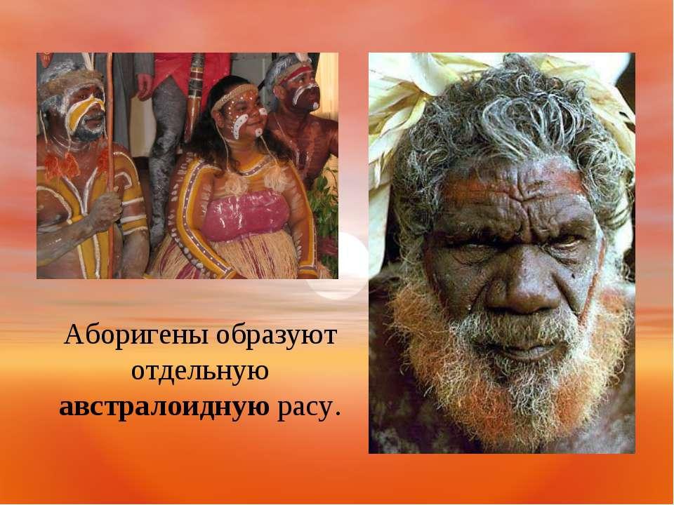 Аборигены образуют отдельную австралоидную расу.
