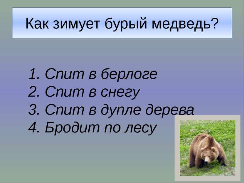 «Братья наши меньшие» Вы набрали один балл. Ваши знания о животных пока невел...