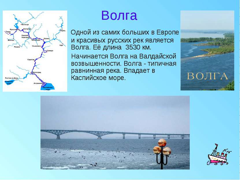 Волга Одной из самих больших в Европе и красивых русских рек является Волга. ...