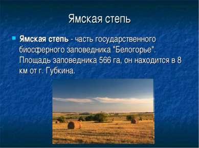 """Ямская степь Ямская степь - часть государственного биосферного заповедника """"Б..."""