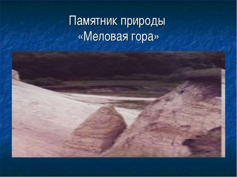 Памятник природы «Меловая гора»
