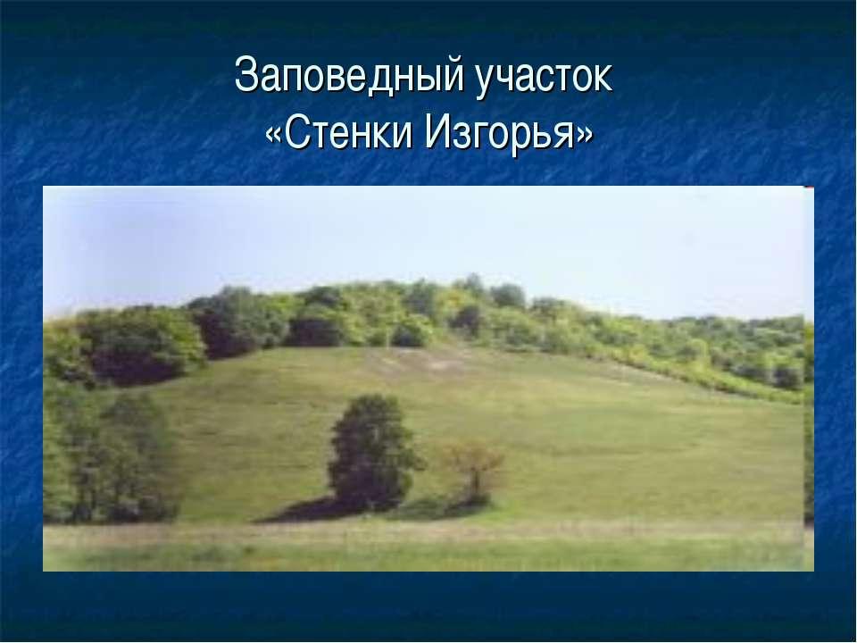 Заповедный участок «Стенки Изгорья»