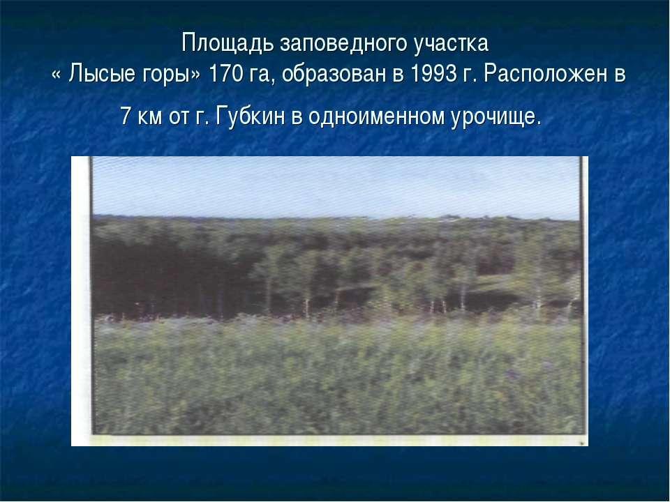 Площадь заповедного участка « Лысые горы» 170 га, образован в 1993 г. Располо...