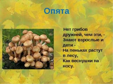 Опята Нет грибов дружней, чем эти, - Знают взрослые и дети - На пеньках расту...