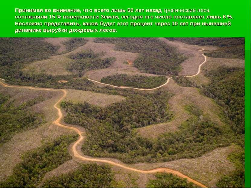 Принимая во внимание, что всего лишь 50 лет назад тропические леса составляли...