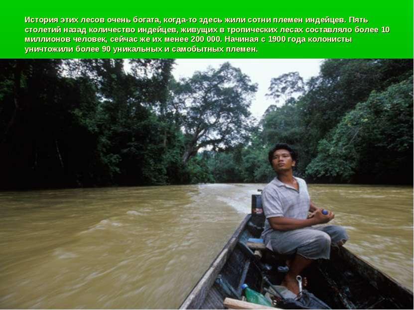 История этих лесов очень богата, когда-то здесь жили сотни племен индейцев. П...