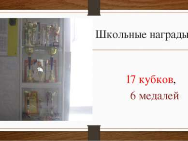 Школьные награды 17 кубков, 6 медалей