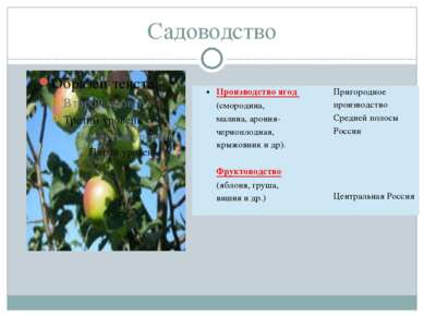 Садоводство Производство ягод (смородина, малина,арония-черноплодная, крыжовн...