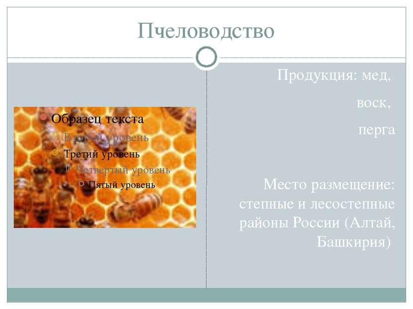 Пчеловодство Продукция: мед, воск, перга Место размещение: степные и лесостеп...