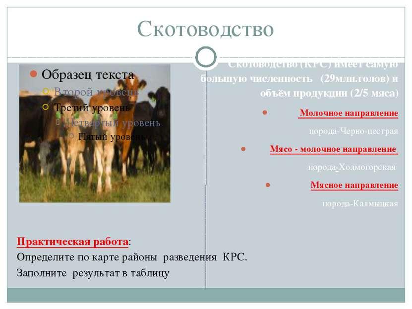 Скотоводство Скотоводство (КРС) имеет самую большую численность (29млн.голов)...
