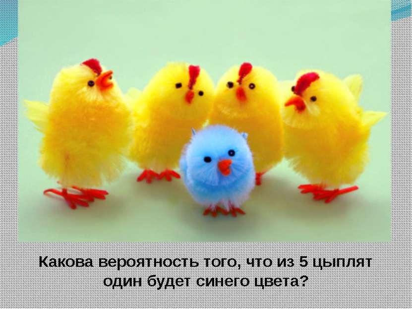 Какова вероятность того, что из 5 цыплят один будет синего цвета?