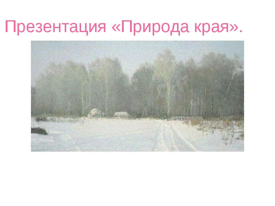 Презентация «Природа края».