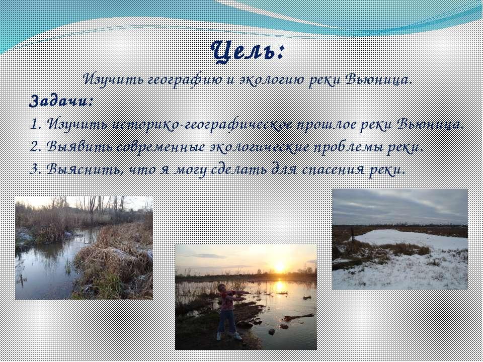 Цель: Изучить географию и экологию реки Вьюница. Задачи: 1. Изучить историко-...