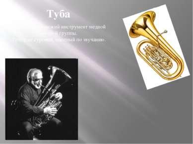 Туба Туба – самый низкий инструмент медной духовой группы. Тембр ее суровый, ...