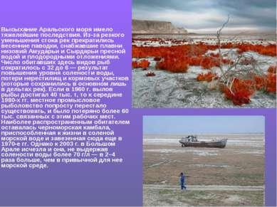 Высыхание Аральского моря имело тяжелейшие последствия. Из-за резкого уменьше...