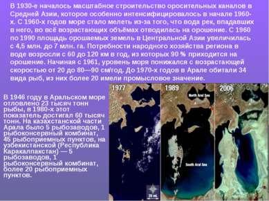 В 1946 году в Аральском море отловлено 23 тысяч тонн рыбы, в 1980-х этот пока...