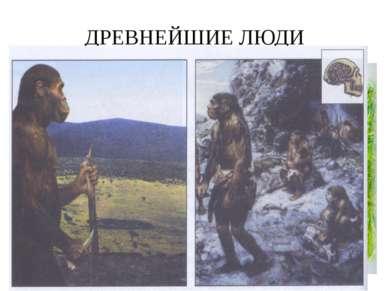 ДРЕВНЕЙШИЕ ЛЮДИ Древнейшие люди появились около 1,5млн. лет назад. Эти невысо...