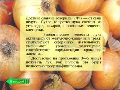 В огород Древние славяне говорили: «Лук — от семи недуг». Сухое вещество лука...