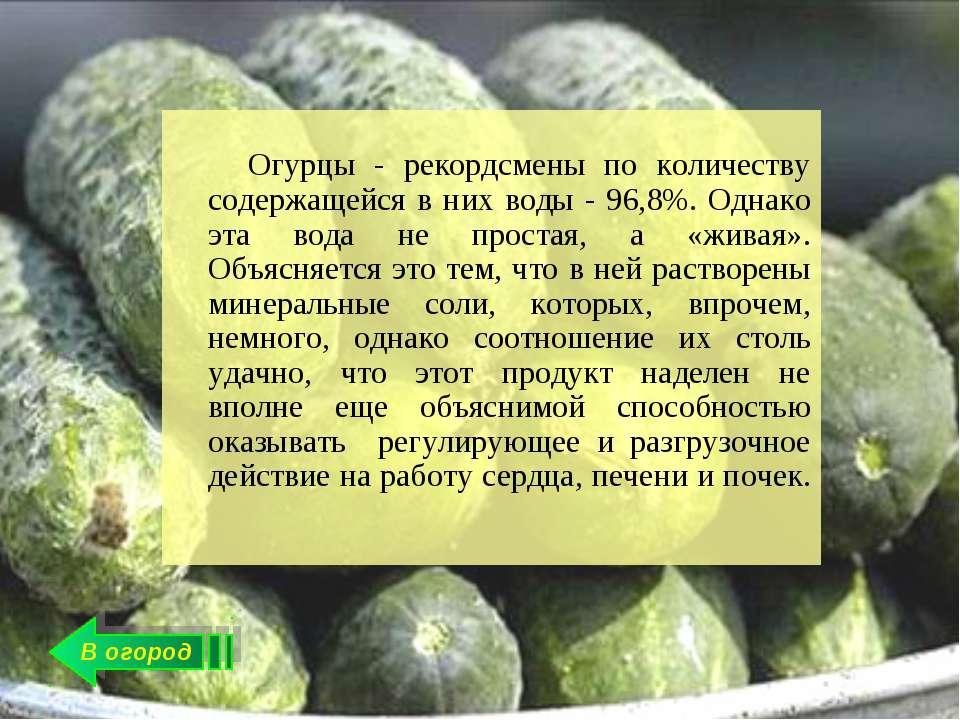 В огород Огурцы - рекордсмены по количеству содержащейся в них воды - 96,8%. ...