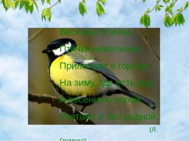 Весёлые птички, Птички-невелички, Прилетают в города На зиму, где есть еда. А...