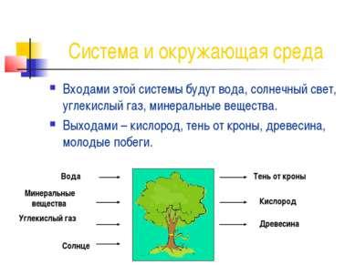 Система и окружающая среда Входами этой системы будут вода, солнечный свет, у...