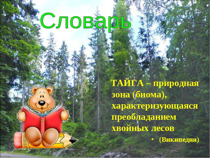 ТАЙГА – природная зона (биома), характеризующаяся преобладанием хвойных лесов...