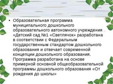 Образовательная программа муниципального дошкольного образовательного автоном...