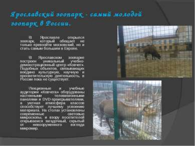 Ярославский зоопарк - самый молодой зоопарк в России. В Ярославле открылся зо...