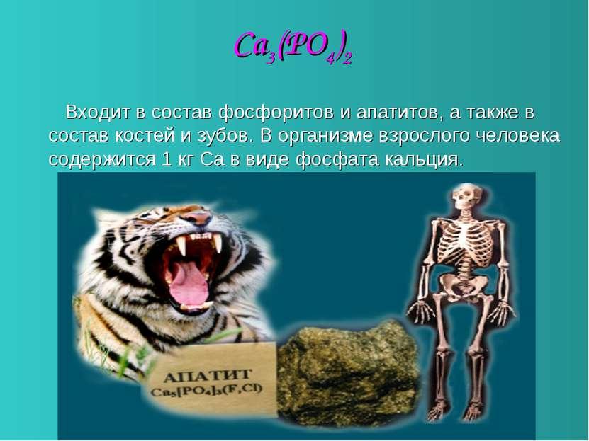 Ca3(PO4)2 Входит в состав фосфоритов и апатитов, а также в состав костей и зу...