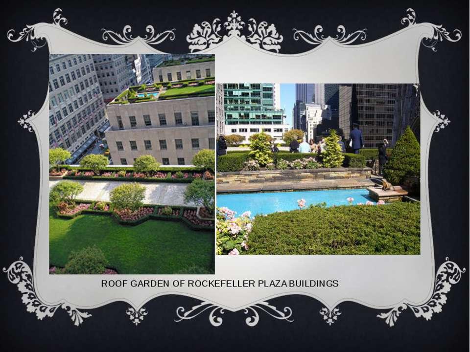 ROOF GARDEN OF ROCKEFELLER PLAZA BUILDINGS