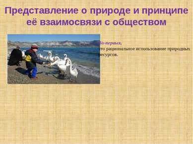 Представление о природе и принципе её взаимосвязи с обществом Во-первых, это ...