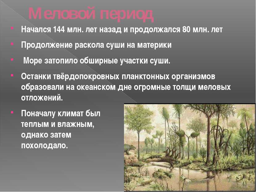 Меловой период Начался 144 млн. лет назад и продолжался 80 млн. лет Продолжен...